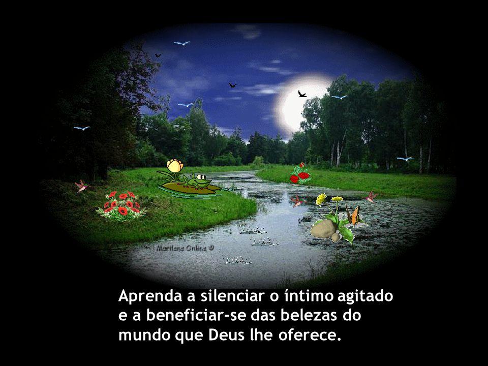 Aprenda a silenciar o íntimo agitado e a beneficiar-se das belezas do mundo que Deus lhe oferece.