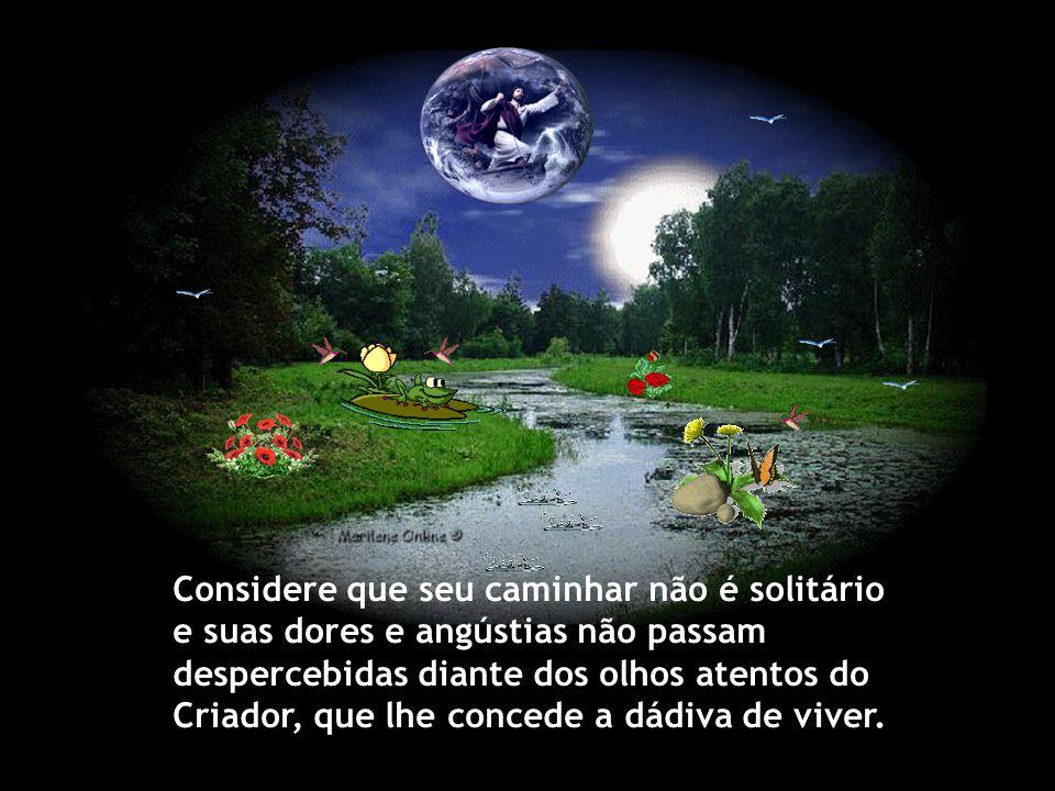 Considere que seu caminhar não é solitário e suas dores e angústias não passam despercebidas diante dos olhos atentos do Criador, que lhe concede a dádiva de viver.