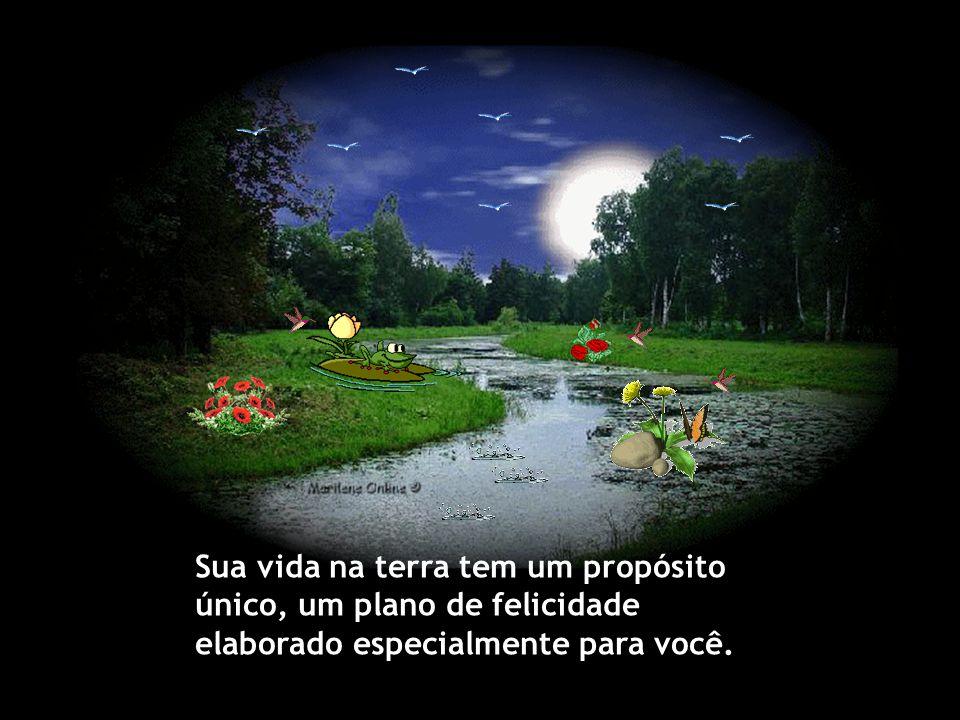 Considere que seu caminhar não é solitário e suas dores e angústias não passam despercebidas diante dos olhos atentos do Criador, que lhe concede a dá