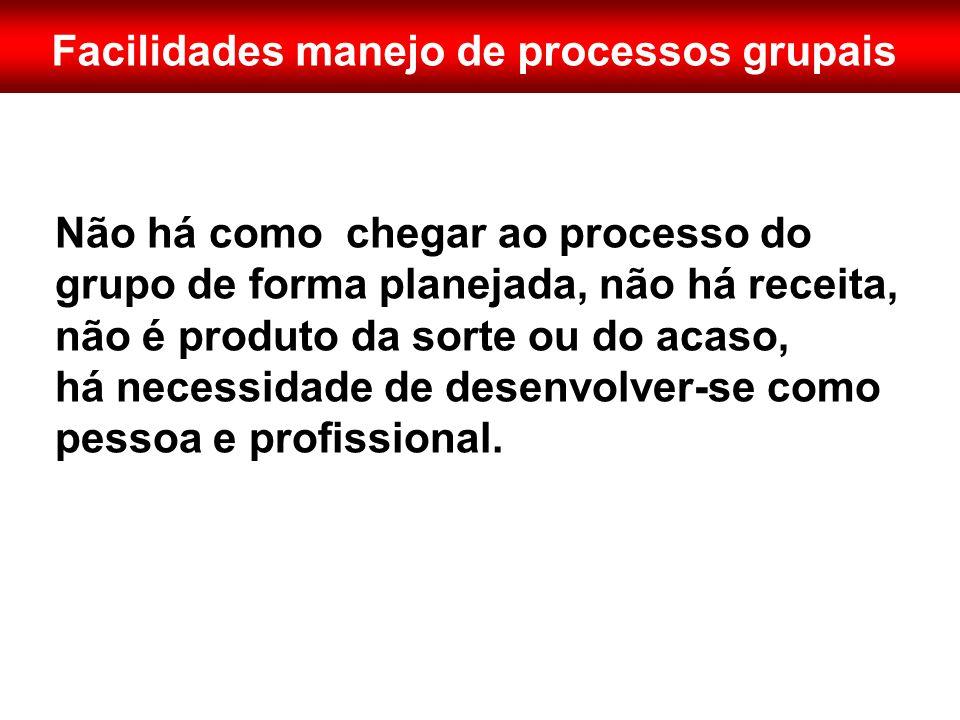 Facilidades manejo de processos grupais Não há como chegar ao processo do grupo de forma planejada, não há receita, não é produto da sorte ou do acaso