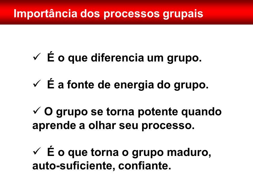 Importância dos processos grupais  É o que diferencia um grupo.  É a fonte de energia do grupo.  O grupo se torna potente quando aprende a olhar se