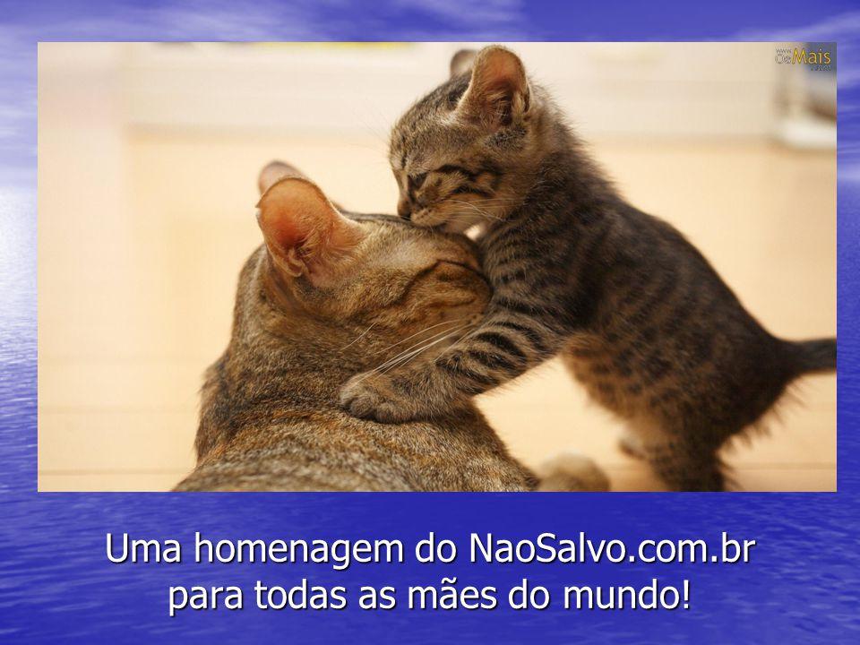 Uma homenagem do NaoSalvo.com.br para todas as mães do mundo!