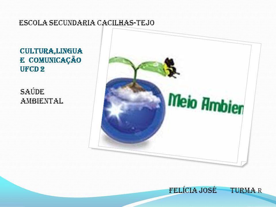 Cultura,lingua e comunicação UFCD 2 Saúde ambiental Escola secundaria Cacilhas-tejo Felícia José Turma R