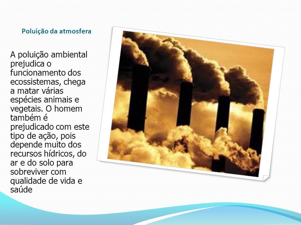 Poluição da atmosfera A poluição ambiental prejudica o funcionamento dos ecossistemas, chega a matar várias espécies animais e vegetais.