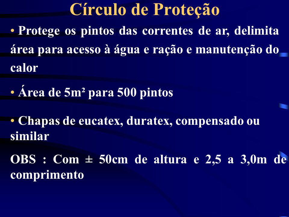 • Protege os pintos das correntes de ar, delimita área para acesso à água e ração e manutenção do calor • Área de 5m² para 500 pintos Círculo de Prote