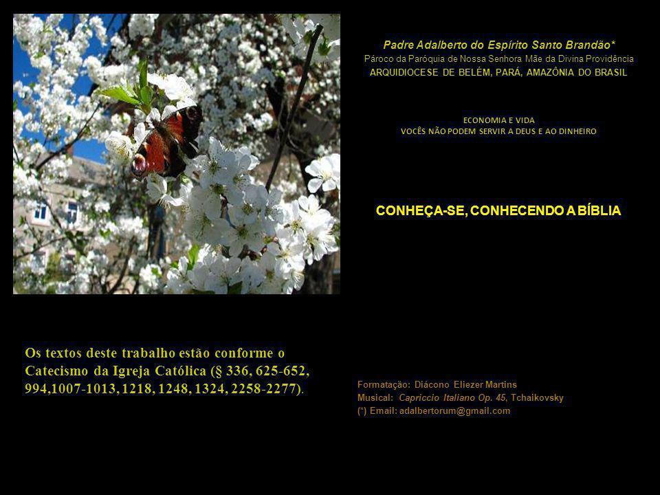 Os textos deste trabalho estão conforme o Catecismo da Igreja Católica (§ 336, 625-652, 994,1007-1013, 1218, 1248, 1324, 2258-2277).