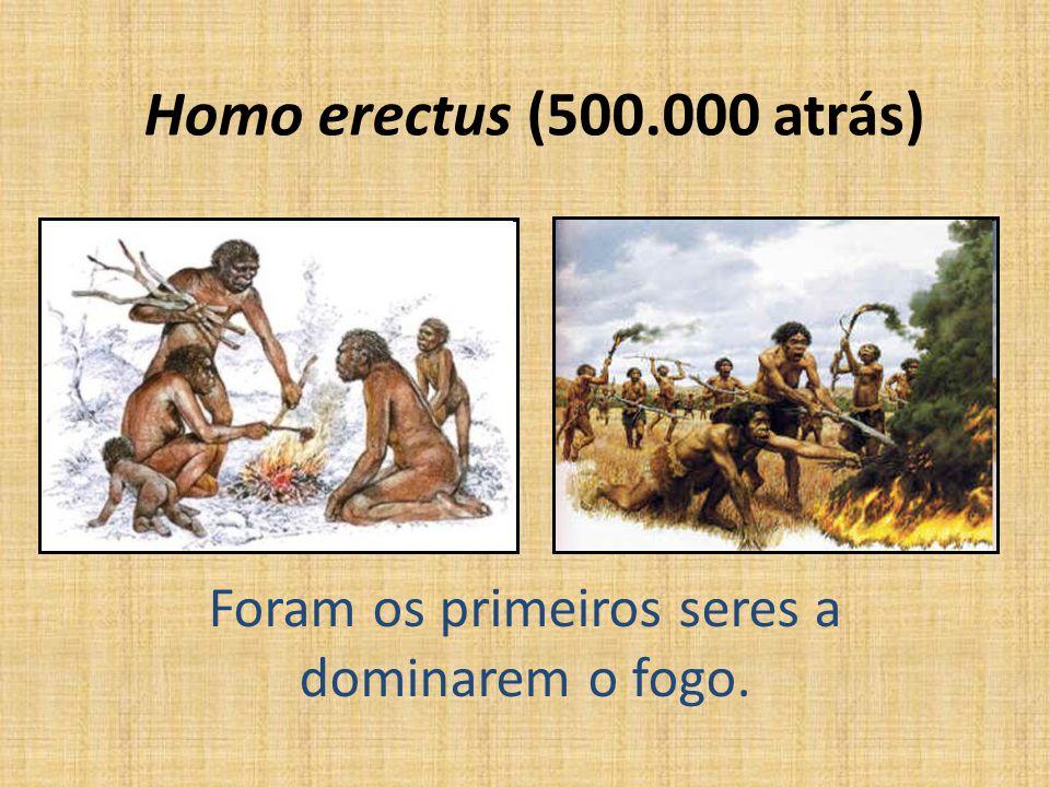 Homo erectus (500.000 atrás) Foram os primeiros seres a dominarem o fogo.