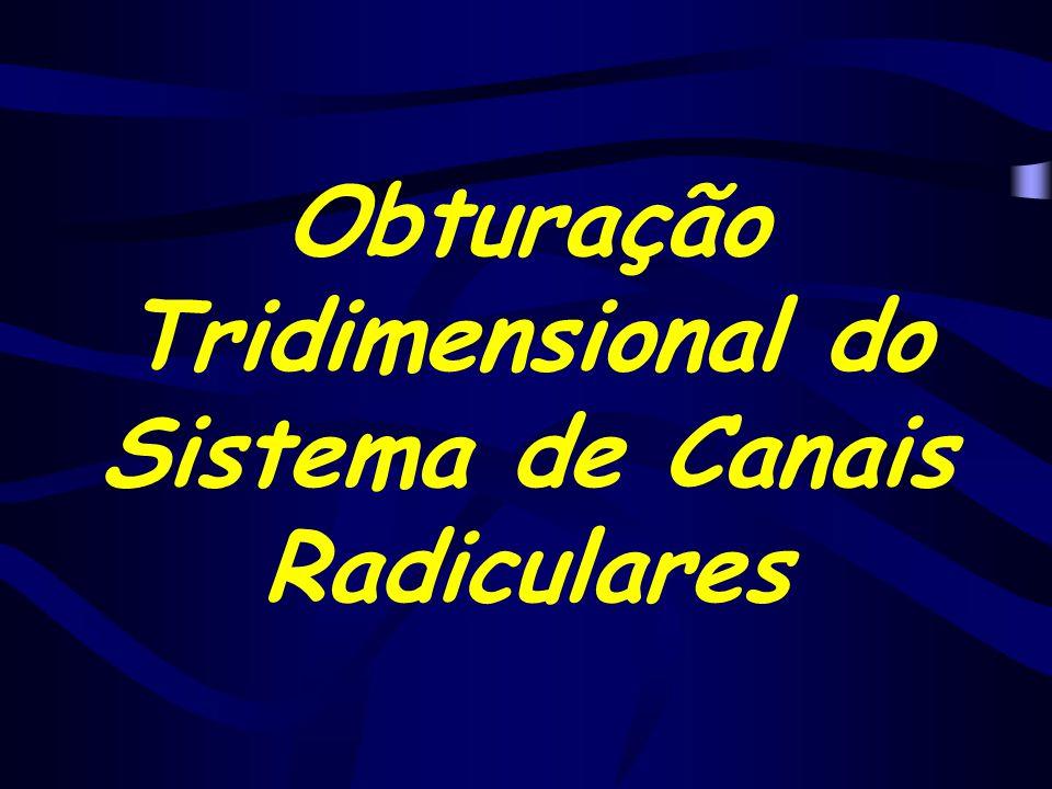 Obturação Tridimensional do Sistema de Canais Radiculares