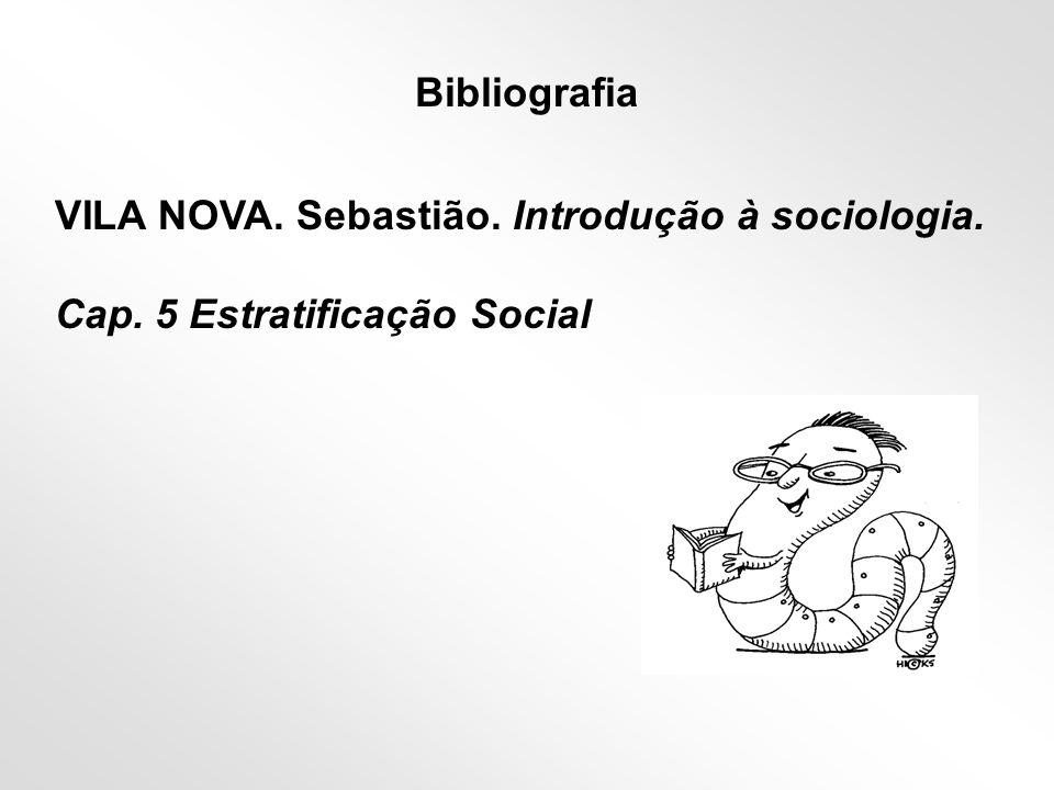 ESTRATIFICAÇÃO SOCIAL ‡ DESIGUALDADE SOCIAL localização hierárquica dos indivíduos em camadas, estratos e em setores homogêneos da população.