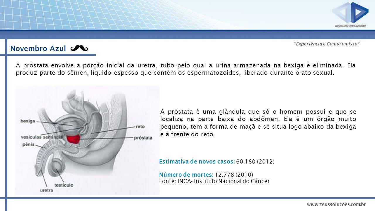 Experiência e Compromisso Novembro Azul No Brasil, o câncer de próstata é o segundo mais comum entre os homens (atrás apenas do câncer de pele não-melanoma).