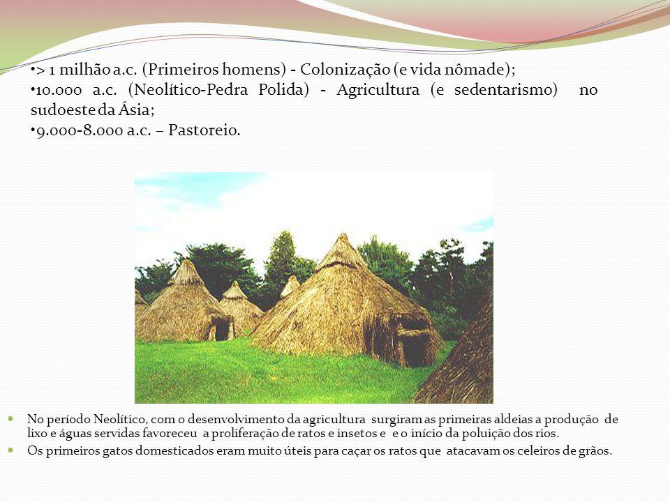  No período Neolítico, com o desenvolvimento da agricultura surgiram as primeiras aldeias a produção de lixo e águas servidas favoreceu a proliferaçã
