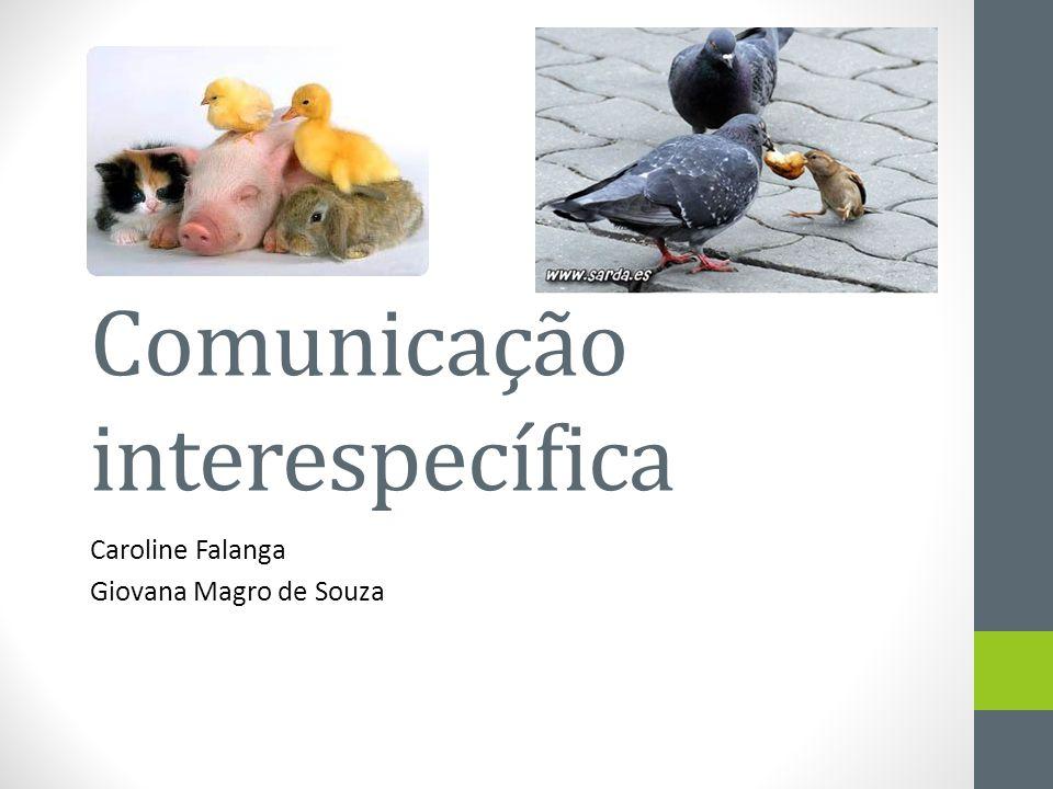 Comunicação interespecífica Caroline Falanga Giovana Magro de Souza