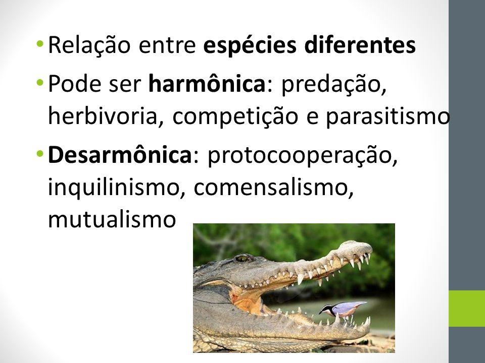 • Relação entre espécies diferentes • Pode ser harmônica: predação, herbivoria, competição e parasitismo • Desarmônica: protocooperação, inquilinismo,