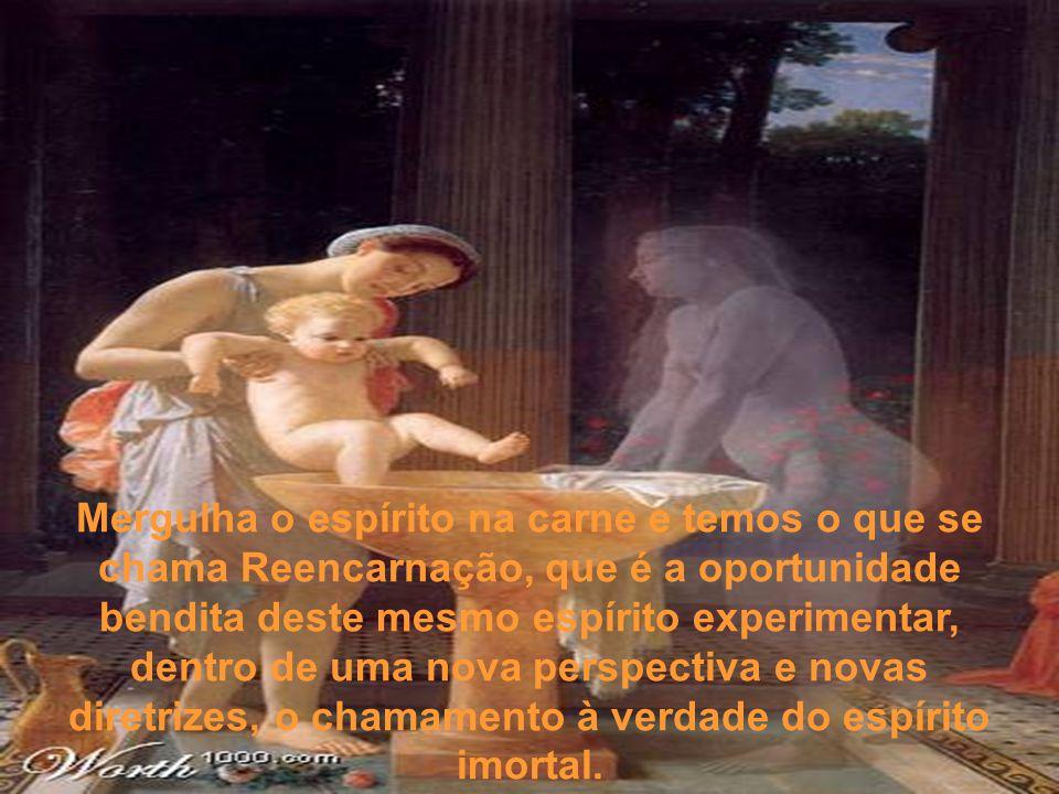 Mergulha o espírito na carne e temos o que se chama Reencarnação, que é a oportunidade bendita deste mesmo espírito experimentar, dentro de uma nova perspectiva e novas diretrizes, o chamamento à verdade do espírito imortal.