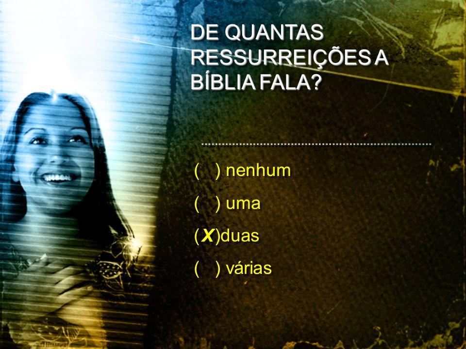 ( ) nenhum ( ) uma ( )duas ( ) várias ( ) nenhum ( ) uma ( )duas ( ) várias DE QUANTAS RESSURREIÇÕES A BÍBLIA FALA? X X