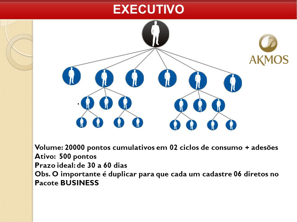 EXECUTIVO Volume: 20000 pontos cumulativos em 02 ciclos de consumo + adesões Ativo: 500 pontos Prazo ideal: de 30 a 60 dias Obs. O importante é duplic