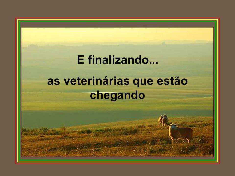 E finalizando... as veterinárias que estão chegando