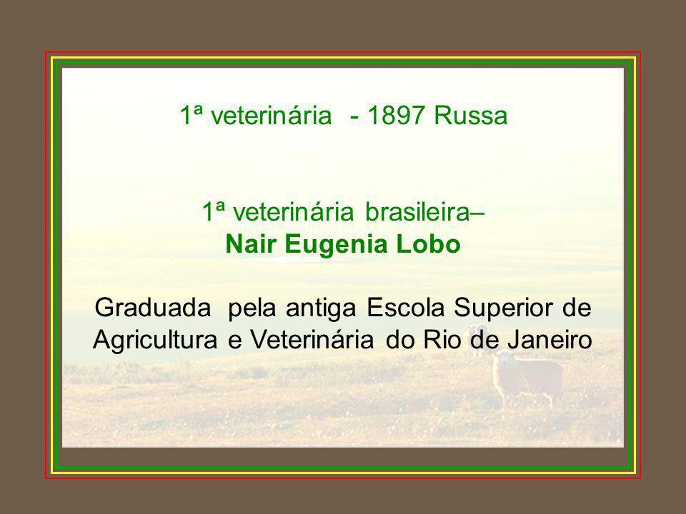 1ª veterinária - 1897 Russa 1ª veterinária brasileira– Nair Eugenia Lobo Graduada pela antiga Escola Superior de Agricultura e Veterinária do Rio de J