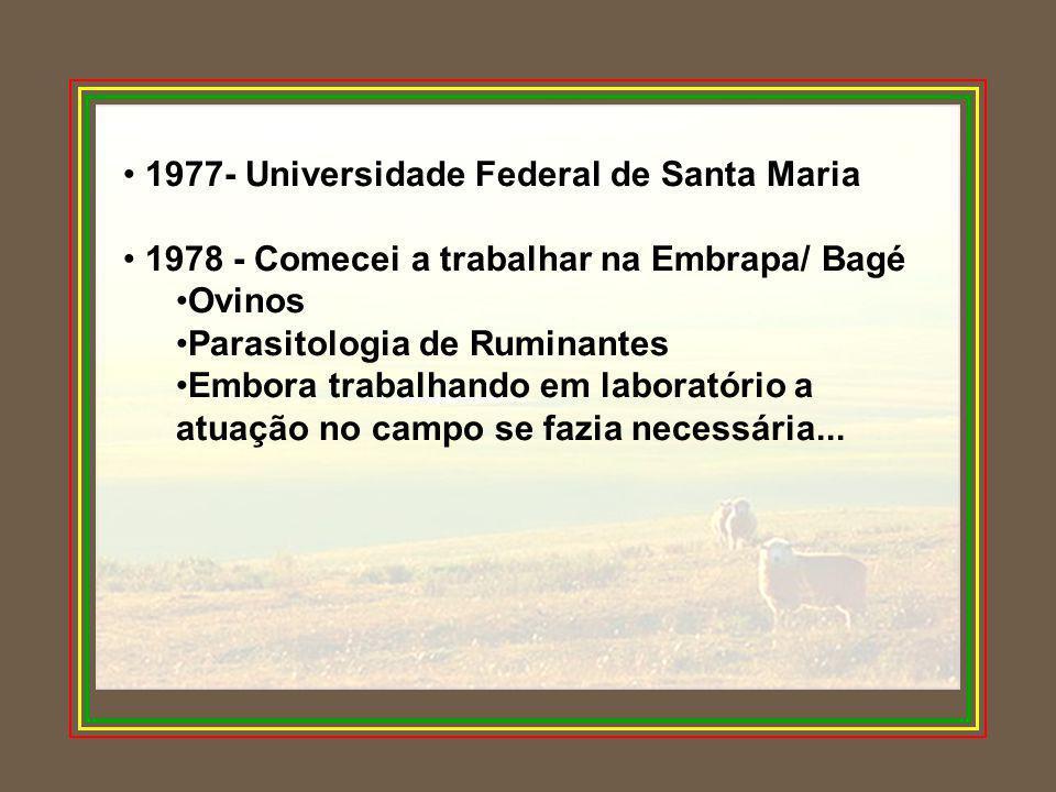 • 1977- Universidade Federal de Santa Maria • 1978 - Comecei a trabalhar na Embrapa/ Bagé •Ovinos •Parasitologia de Ruminantes •Embora trabalhando em laboratório a atuação no campo se fazia necessária...