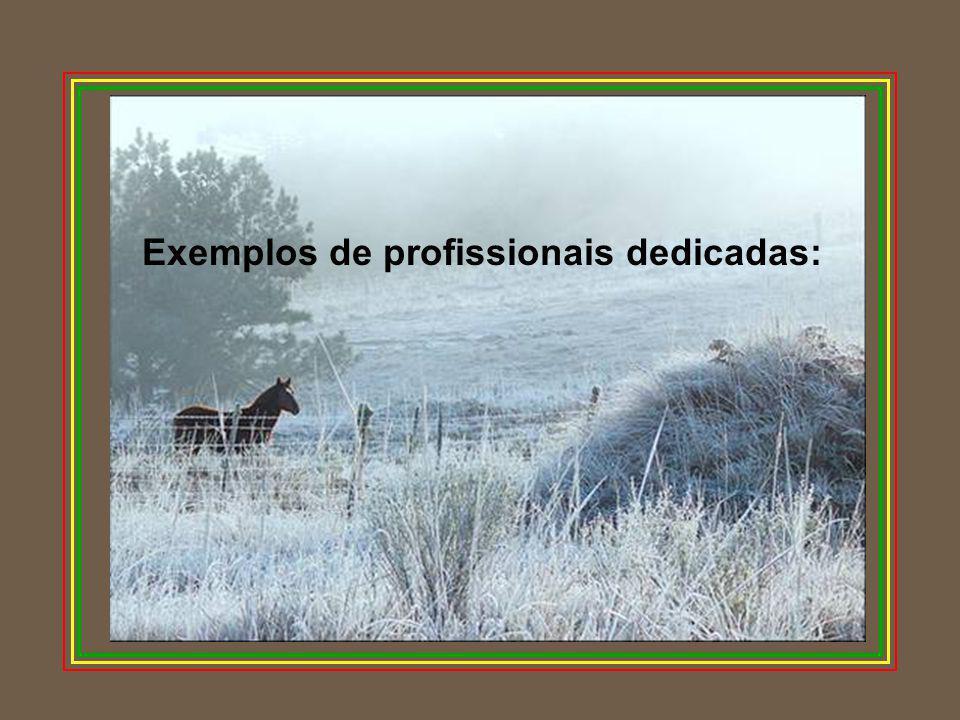 Exemplos de profissionais dedicadas: