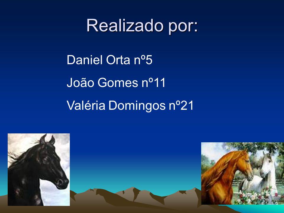 Realizado por: Daniel Orta nº5 João Gomes nº11 Valéria Domingos nº21