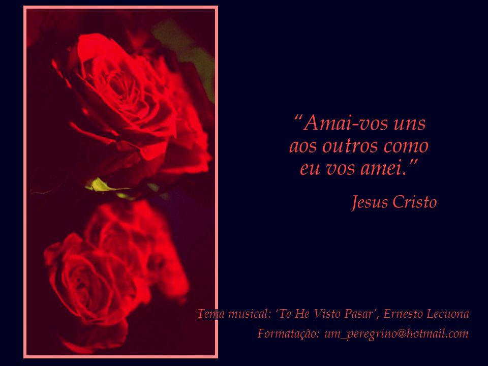 """""""Ó Amigo! No jardim do teu coração nada plantes salvo a rosa do amor..."""" Bahá'u'lláh"""