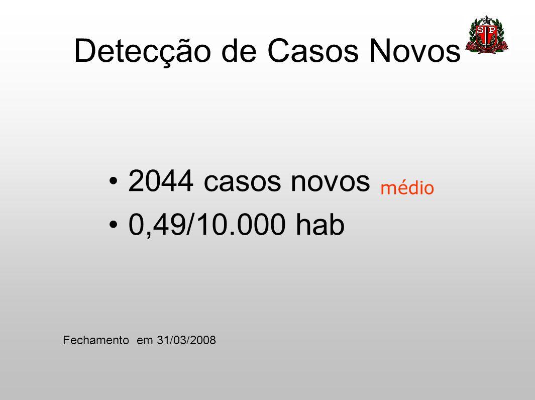 Detecção de Casos Novos •2044 casos novos •0,49/10.000 hab médio Fechamento em 31/03/2008