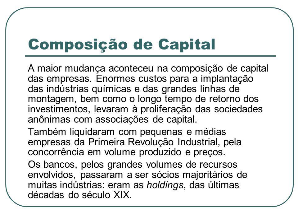 Composição de Capital A maior mudança aconteceu na composição de capital das empresas. Enormes custos para a implantação das indústrias químicas e das