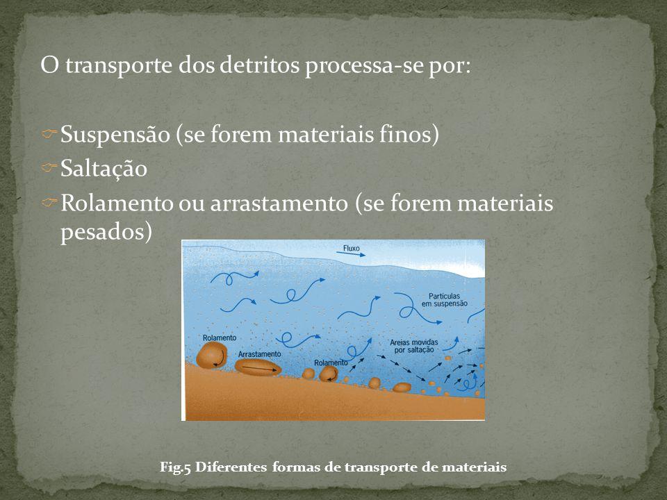  Sedimentação - deposição dos materiais ao longo do leito e nas margens.