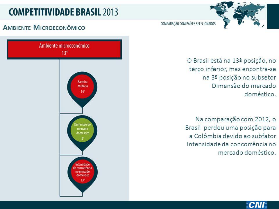 A MBIENTE M ICROECONÔMICO O Brasil está na 13ª posição, no terço inferior, mas encontra-se na 3ª posição no subsetor Dimensão do mercado doméstico.