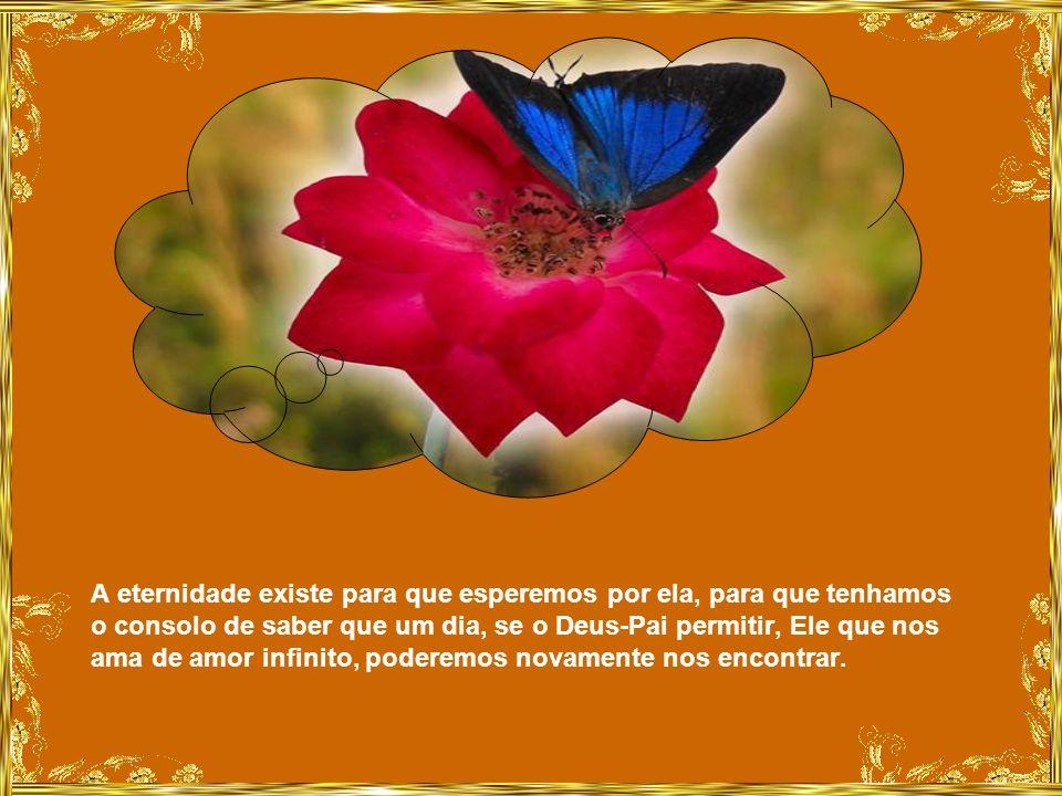 Que as lágrimas não nos impeçam de sorrir novamente um dia quando a dor for mais amena e as lembranças felizes começarem a voltar, como as flores no j