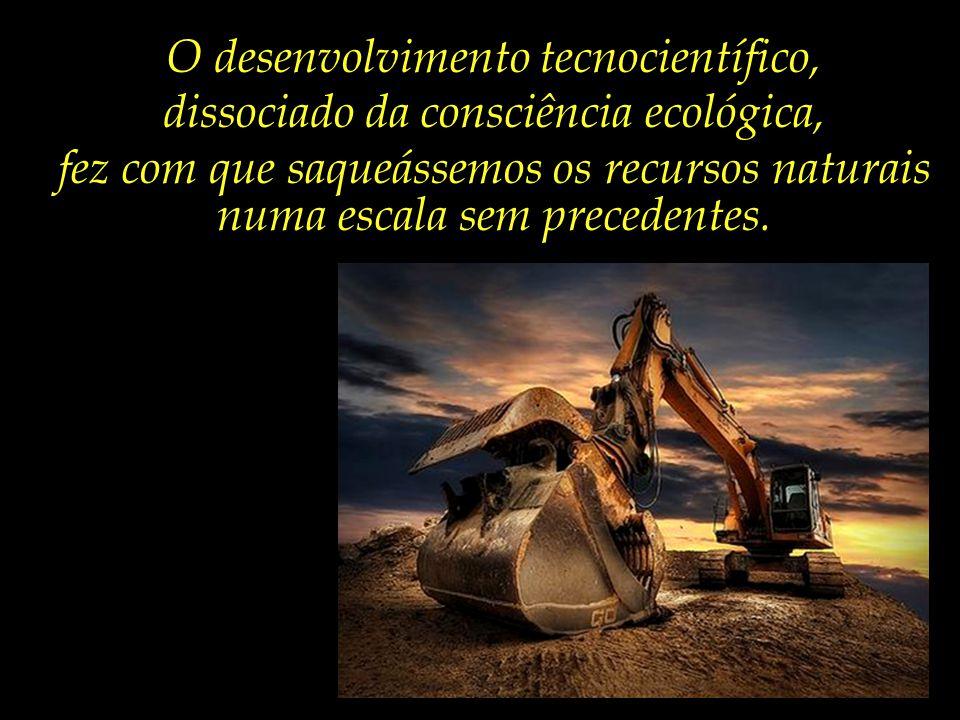 A demanda por recursos naturais dobrou desde a década de 1960. – vítima do avanço das atividades humanas, como mineração, agricultura e pesca, sobre f