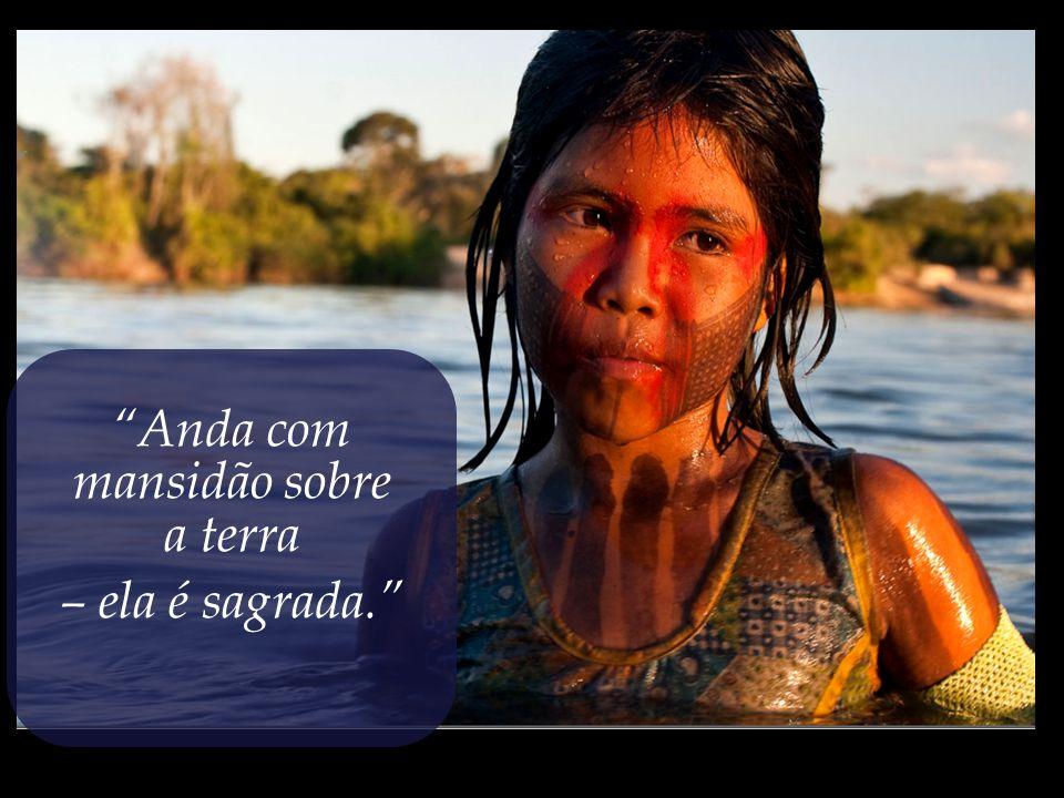 Gravar na alma o antigo ditado indígena que nos ensina:...