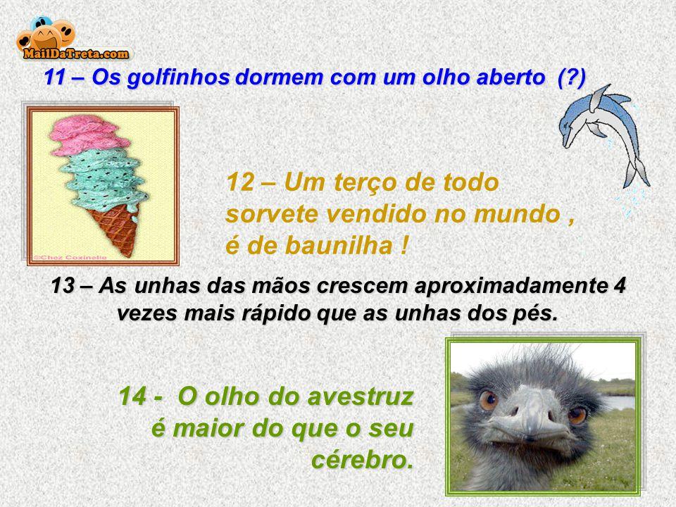 11 – Os golfinhos dormem com um olho aberto (?) 12 – Um terço de todo sorvete vendido no mundo, é de baunilha .