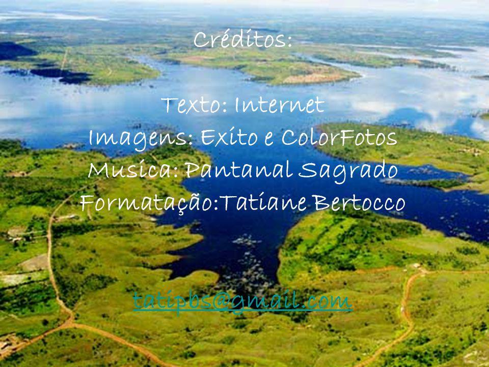 Créditos: Texto: Internet Imagens: Exito e ColorFotos Musica: Pantanal Sagrado Formatação:Tatiane Bertocco tatipbs@gmail.com