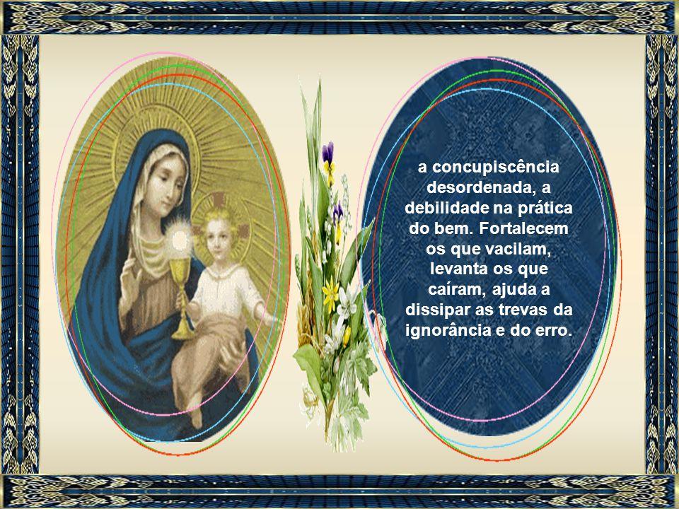 Neste sentido, a Virgem Maria remedeia também que o pecado original deixou em nossas almas e que os pecados pessoais agravaram: