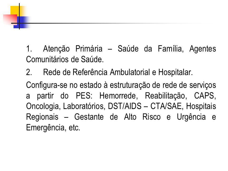 1.Atenção Primária – Saúde da Família, Agentes Comunitários de Saúde.