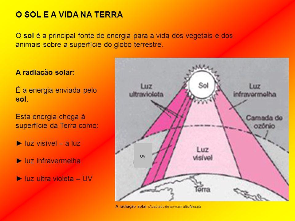 O SOL E A VIDA NA TERRA A radiação solar: É a energia enviada pelo sol.