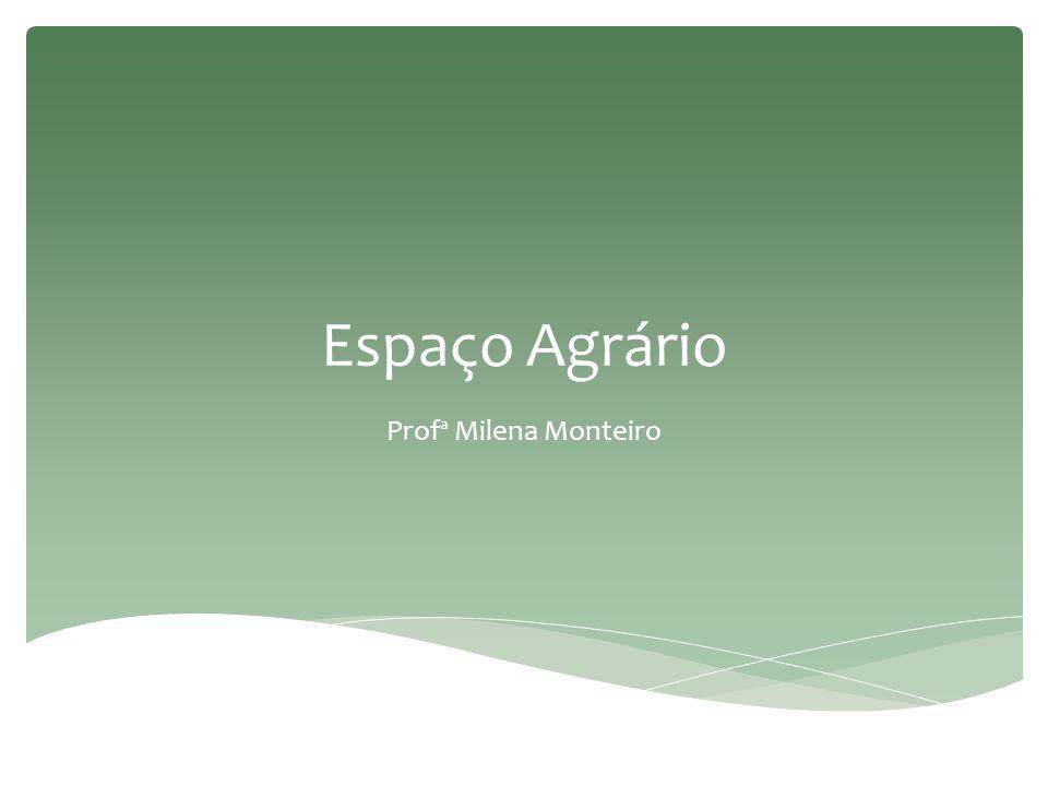 Espaço agrário no mundo subdesenvolvido e no Brasil  Não prioriza o abastecimento do mercado interno – passado colonial.
