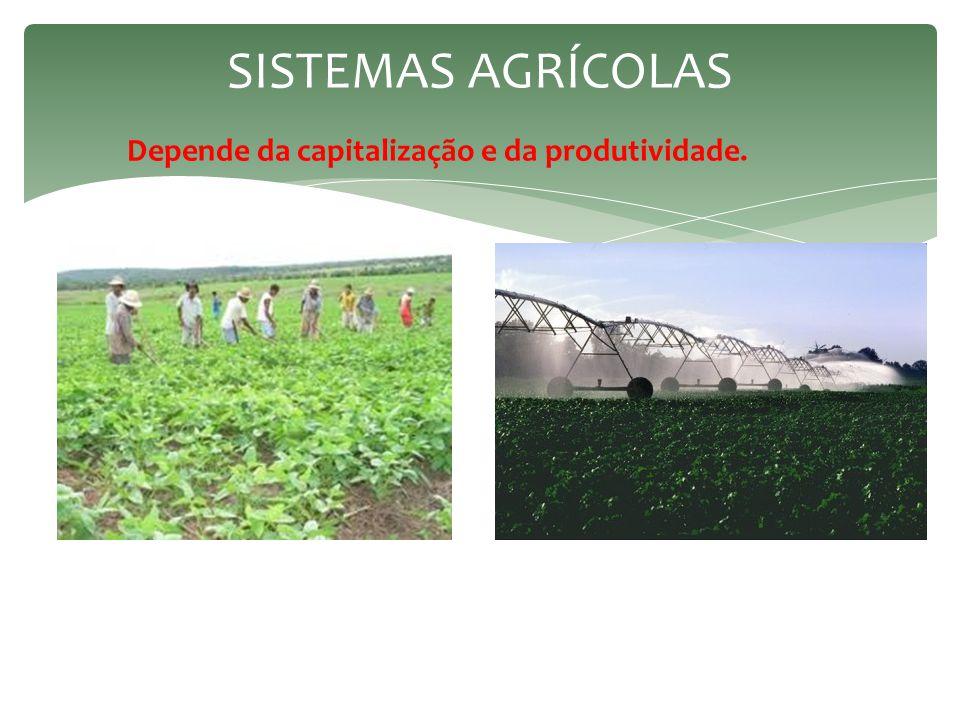  Intensidade tecnológica que caracteriza o setor em algumas regiões do planeta.  A Revolução Industrial → transformação na agropecuária → substituin