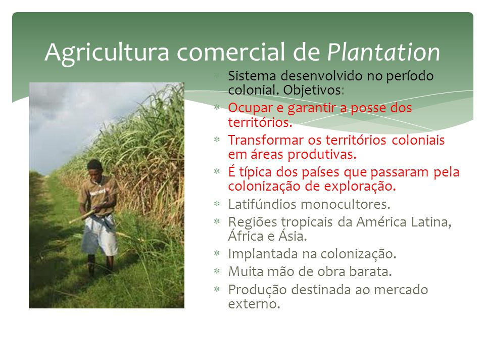 A situação do México  Agricultura de subsistência – sociedades pré- colombianas.  Início do século XX – reforma agrária.  Reorganizou as terras ind