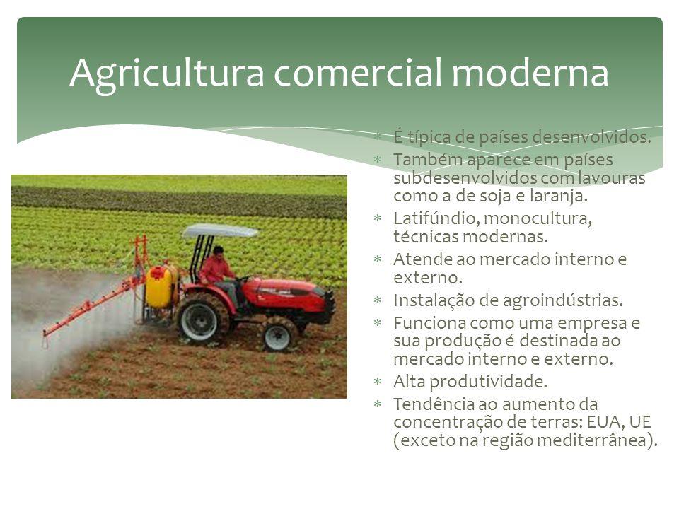 Agricultura comercial de Plantation  Sistema desenvolvido no período colonial. Objetivos:  Ocupar e garantir a posse dos territórios.  Transformar