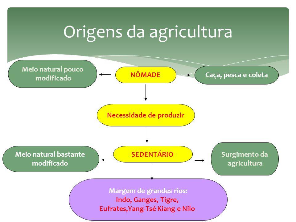 Principais sistemas agrícolas  Agricultura de subsistência 1.
