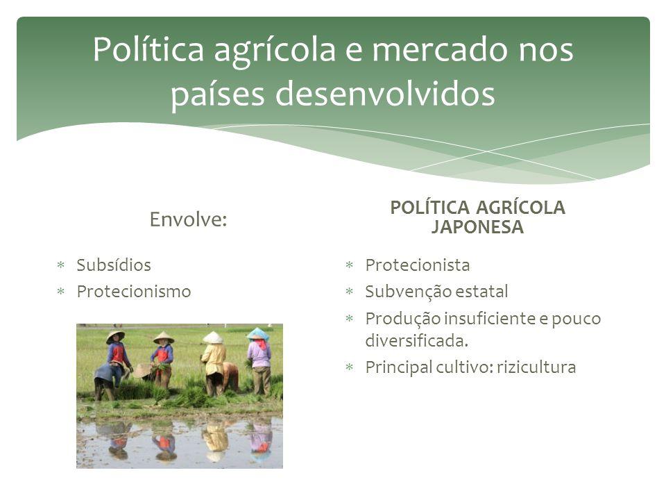  Incorporação de novas áreas, como as desérticas – irrigação.