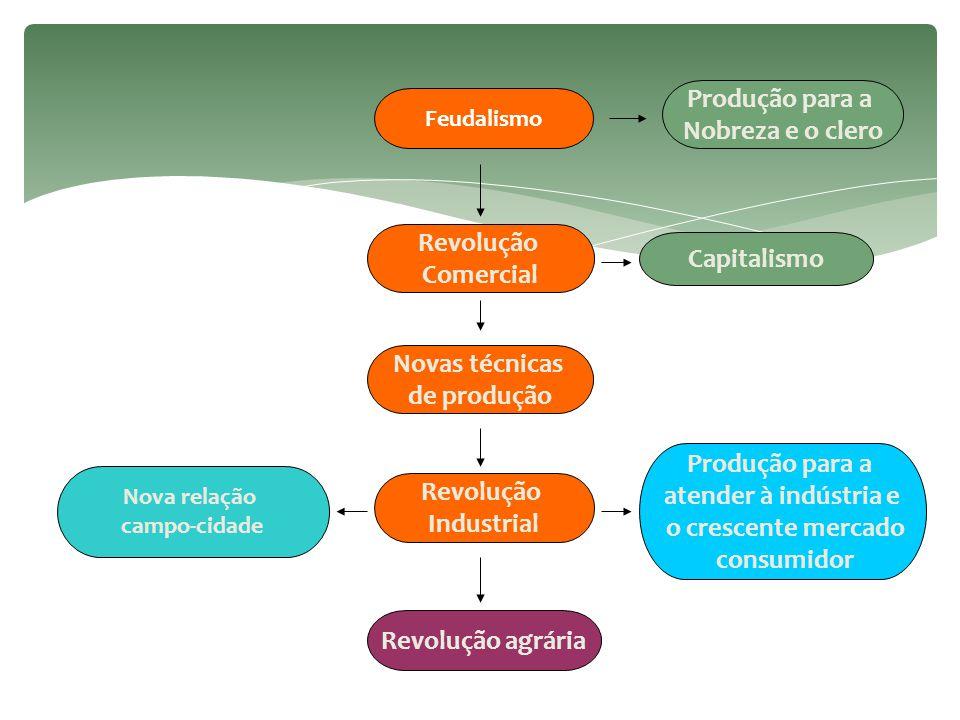  Integração campo-cidade → origina a agroindústria (subordinação da agricultura à indústria).