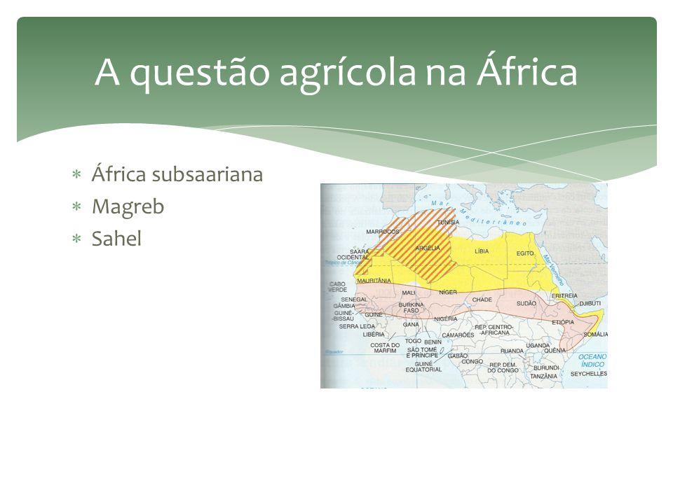 Espaço agrário no mundo subdesenvolvido e no Brasil  Não prioriza o abastecimento do mercado interno – passado colonial.  Apoio governamental à expo