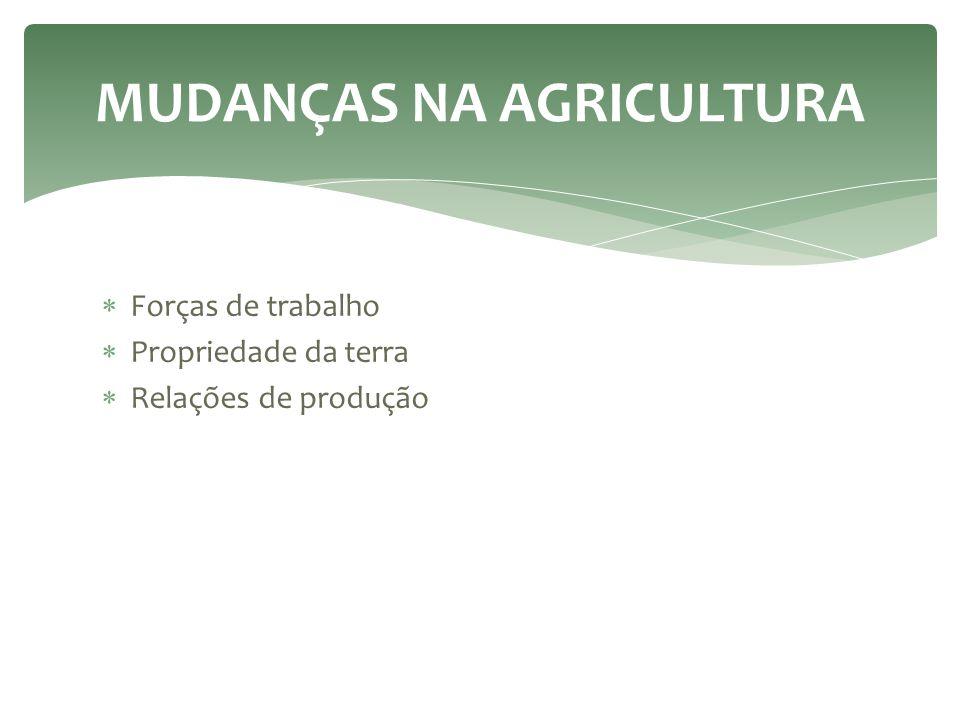  Forças de trabalho  Propriedade da terra  Relações de produção MUDANÇAS NA AGRICULTURA