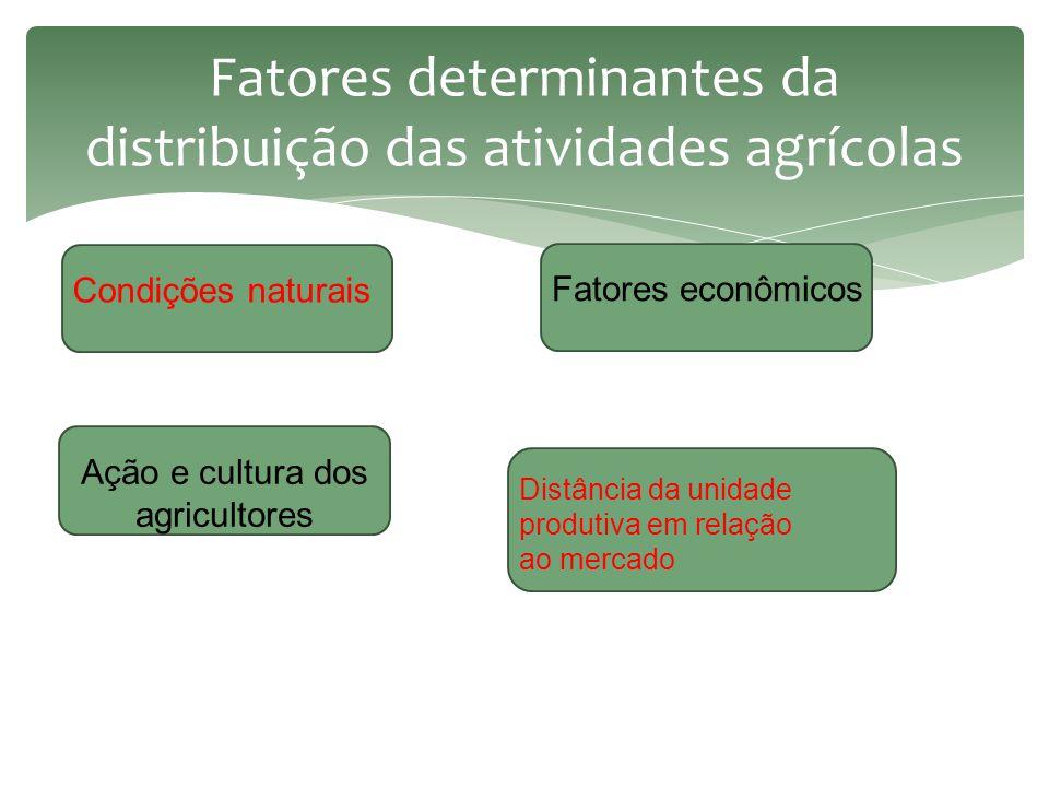 Fatores determinantes da distribuição das atividades agrícolas Condições naturais Fatores econômicos Ação e cultura dos agricultores Distância da unidade produtiva em relação ao mercado