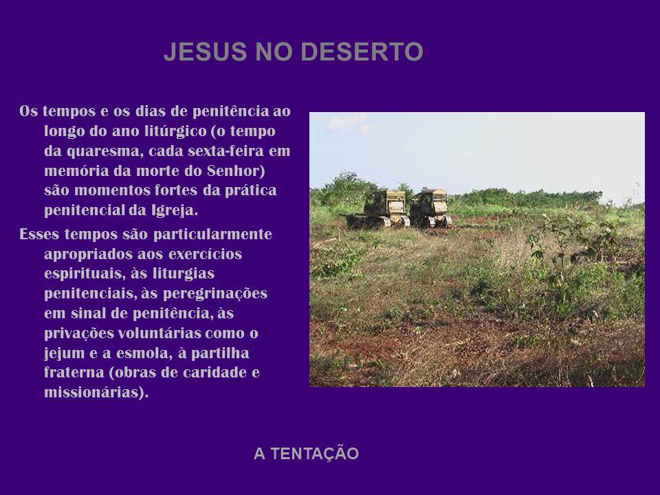 JESUS NO DESERTO Os tempos e os dias de penitência ao longo do ano litúrgico (o tempo da quaresma, cada sexta-feira em memória da morte do Senhor) são