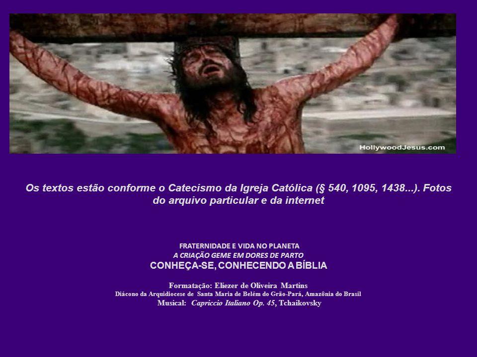 FRATERNIDADE E VIDA NO PLANETA A CRIAÇÃO GEME EM DORES DE PARTO CONHEÇA-SE, CONHECENDO A BÍBLIA Formatação: Eliezer de Oliveira Martins Diácono da Arq